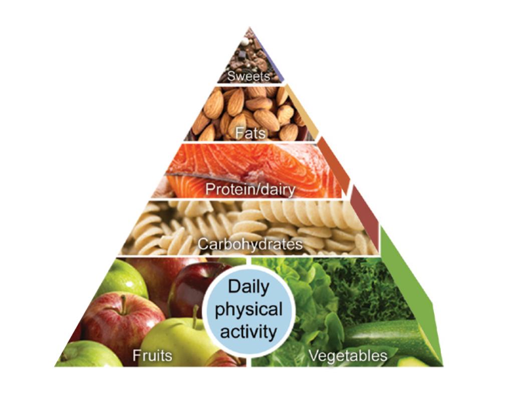 FoodPyramid.png