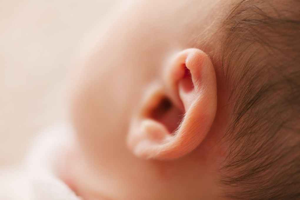 macro photography of babys ear