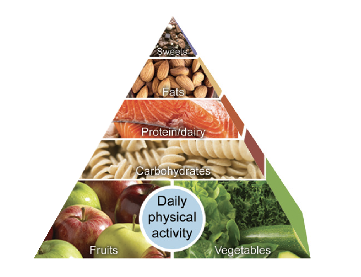 Mayo Clinic Food Pyramid for Weight Loss | Great Care At Low Costs